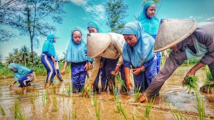 Edukasi Pertanian Desa Wisata Mangrove Tirtohargo